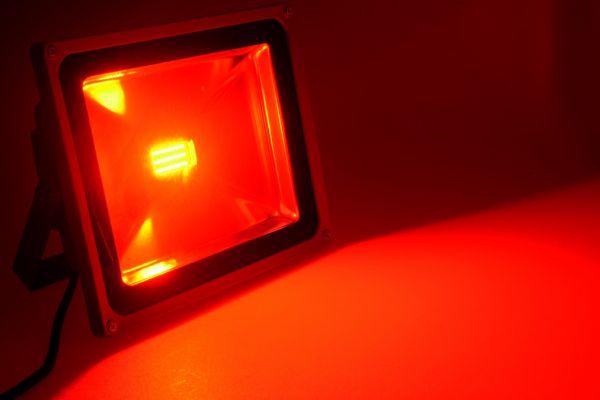 led50f22lroo-27DC23D56-C776-9B66-A3C6-18EBAFF79429.jpg